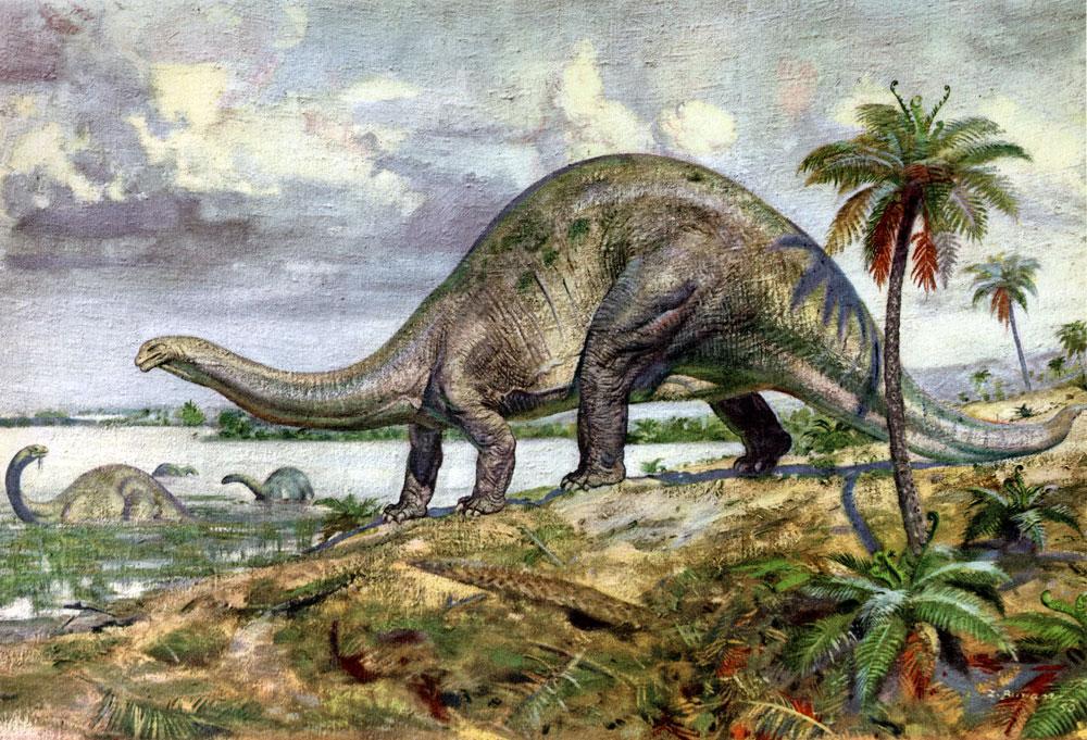 Картинки по запросу бронтозавр