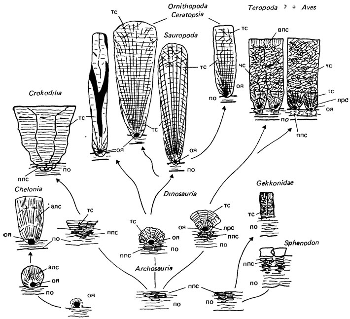 лекарство классификация